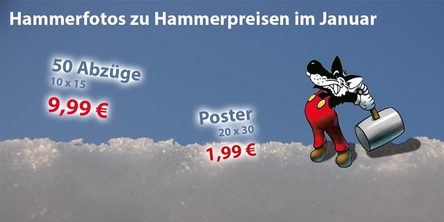Hammerfotos zu Hammerpreisen - Fotoarbeiten-Sonderangebote im Januar 2018 bei Foto Wolff