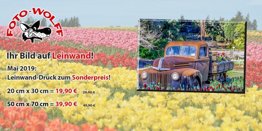 Ihr Bild auf Leinwand! Mai 2019: Leinwand-Druck zum Sonderpreis!