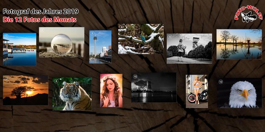 Foto Wolff-Fotograf des Jahres 2019: Die 12 Fotos des Monats