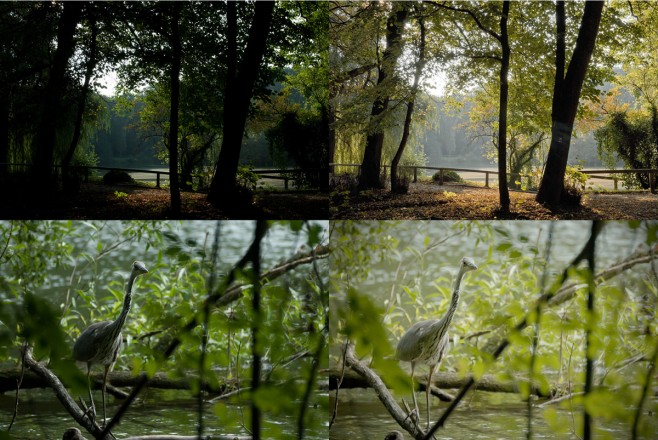 Vorher-Nachher-Bild: Im Foto Wolff-Fotokurs erlernen die Teilnehmer Grundlagen der digitalen Bildbearbeitung