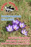 Sonderangebote bei Foto Wolff Dinslaken im März 2020