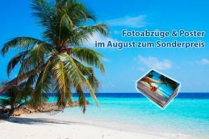 August-Sonderangebote bei Foto Wolff in Dinslaken