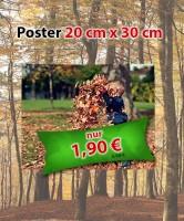 Sonderangebot November 2018: Posterabzug 20 cm x 30 cm für 1,90 €