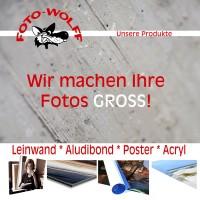 Wir machen Ihre Fotos groß - Titelseite der aktuellen Foto Wolff-Fotoarbeiten-Broschüre