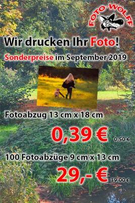 Fotoarbeiten Sonderangebote September 2019